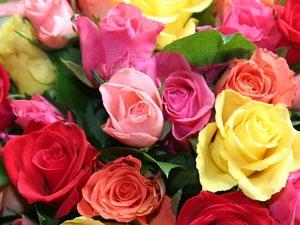 Красивые цветы для свадьбы